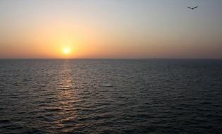 Salidas a Alta Mar